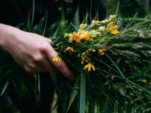 Wilczyce Leśny Krąg Kobiet PINE Edukacja wNaturze