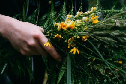 Wilczyce Leśny Krąg Kobiet PINE Edukacja w Naturze